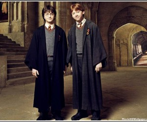 Harry Potter and the Chamber of Secrets (2002) Harry Ron