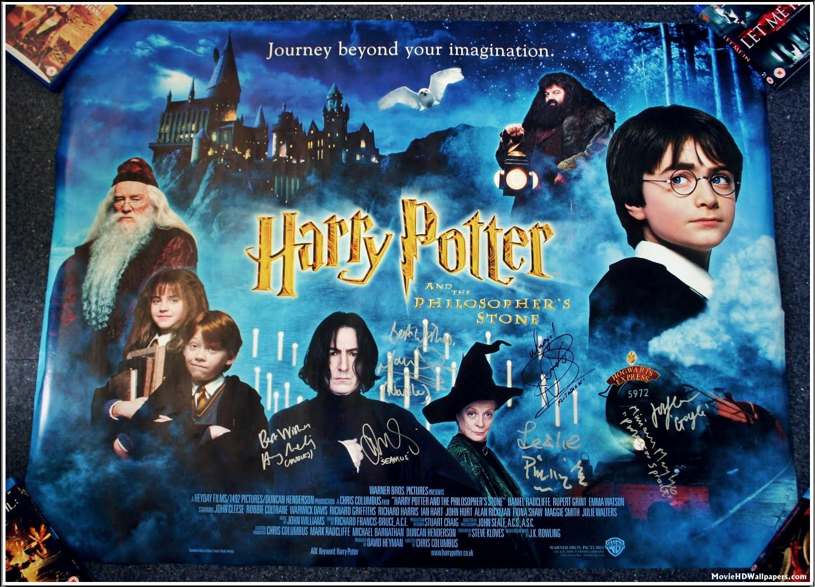 harry potter and the sorcerers stone An orphaned boy enrolled in a school of wizardry, where he learns the truth about himself, his family and the terrible evil that haunts the magical world.