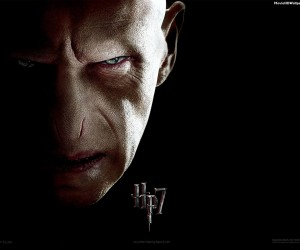 Harry Potter and the Deathly Hallows Part 1 - Voldermort