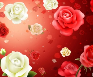 Beautiful Flowers HD Wallpapers