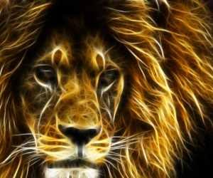 another-lion-Wallpaper__yvt2
