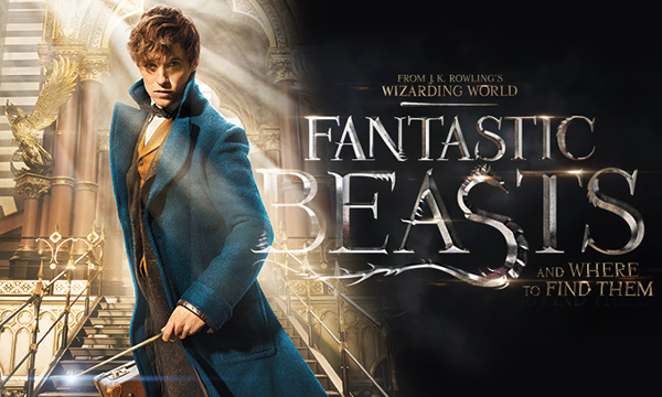 fantastic-beasts-and-where-to-find-them-wallpaper-hd
