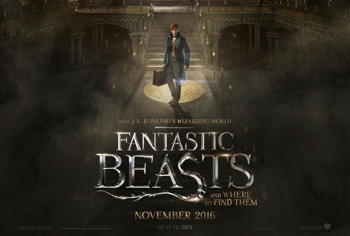 fantastic-beasts-and-where-to-find-them-wallpapers