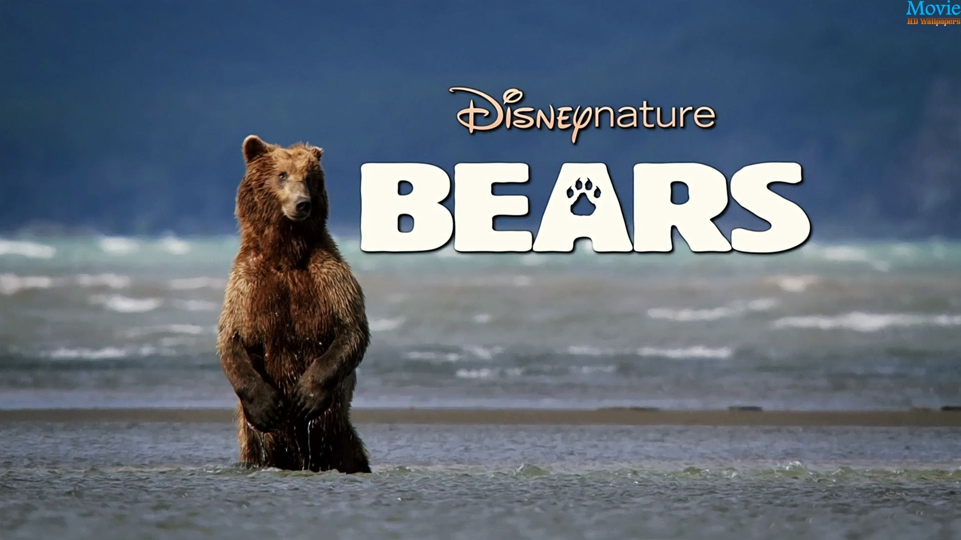 Bears 2014 Disney Movie Wallpapers
