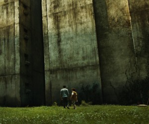 The Maze Runner 2014 Movie Wallpapers