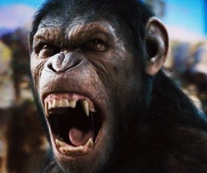 Dawn of the Planet of the Apes 300x250 Dawn of the Planet of the Apes (2014)