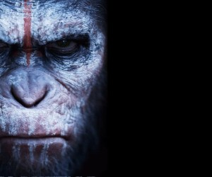 Dawn of the Planet of the Apes Desktop Wallpapers 300x250 Dawn of the Planet of the Apes (2014)
