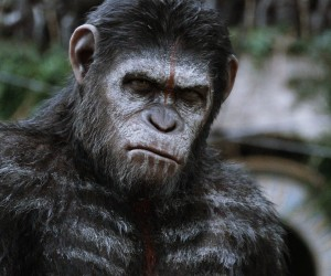 Dawn of the Planet of the Apes HD Wallpapers 300x250 Dawn of the Planet of the Apes (2014)