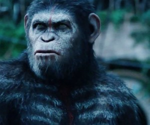 Dawn of the Planet of the Apes Monkey 300x250 Dawn of the Planet of the Apes (2014)