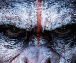 Dawn of the Planet of the Apes Movie Wallpaper 300x250 Dawn of the Planet of the Apes (2014)