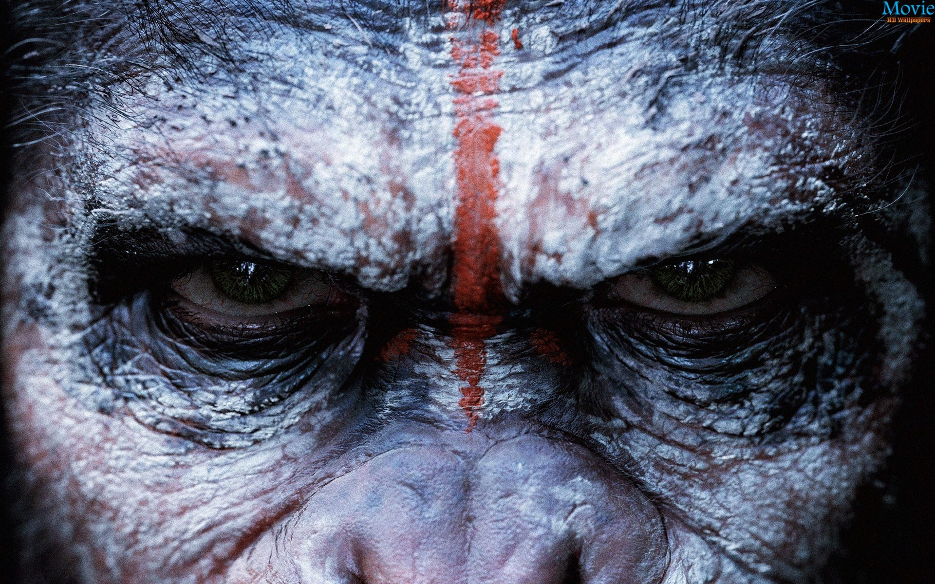 Dawn of the Planet of the Apes (2014) - Movie HD Wallpapers