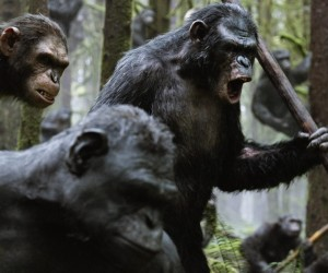 Dawn of the Planet of the Apes Movie Wallpapers 300x250 Dawn of the Planet of the Apes (2014)