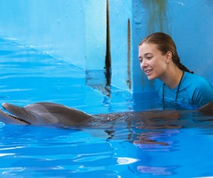 Dolphin Tale 2 Actress