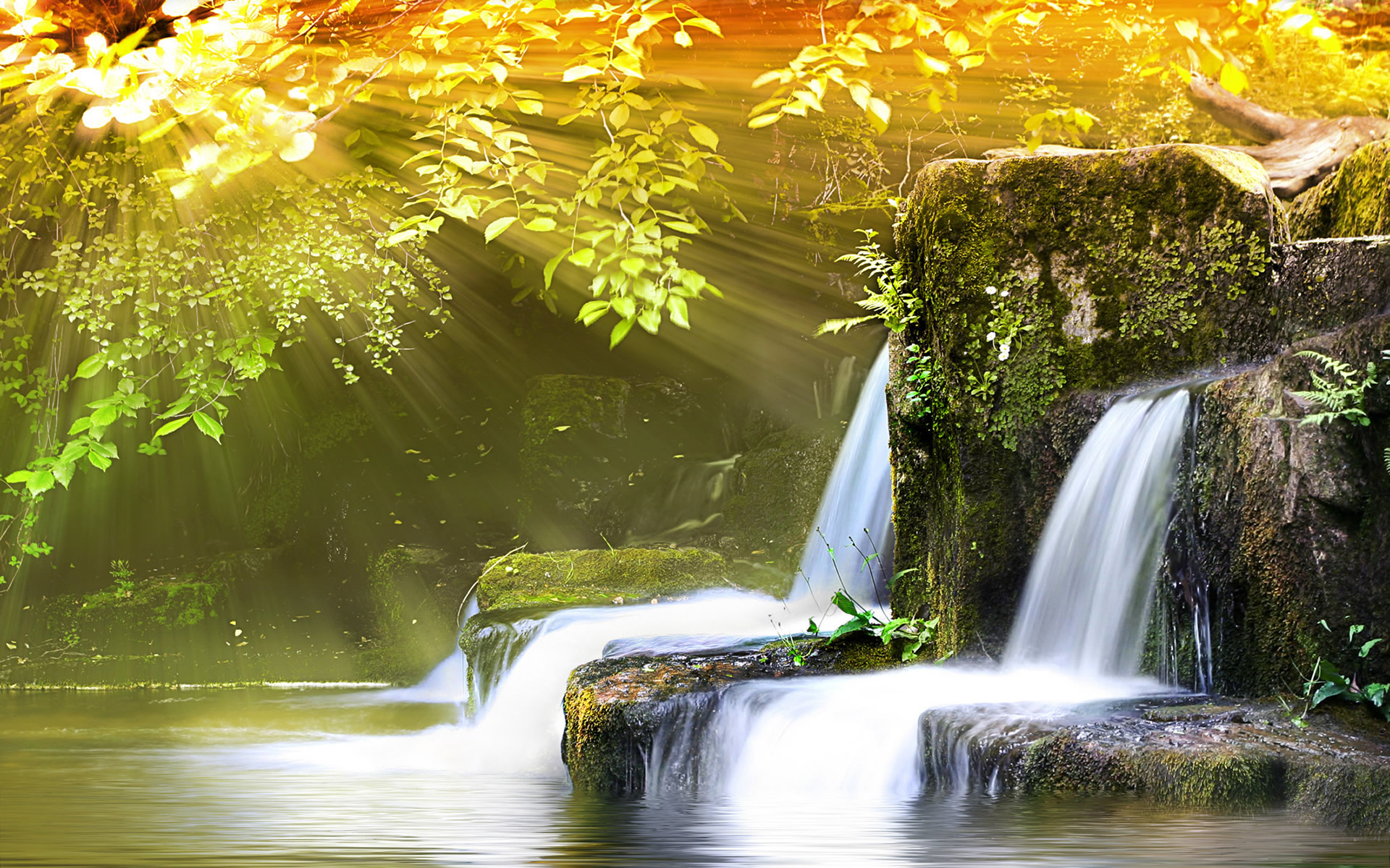 Nature Wallpapers 2014 Movie Hd Wallpapers